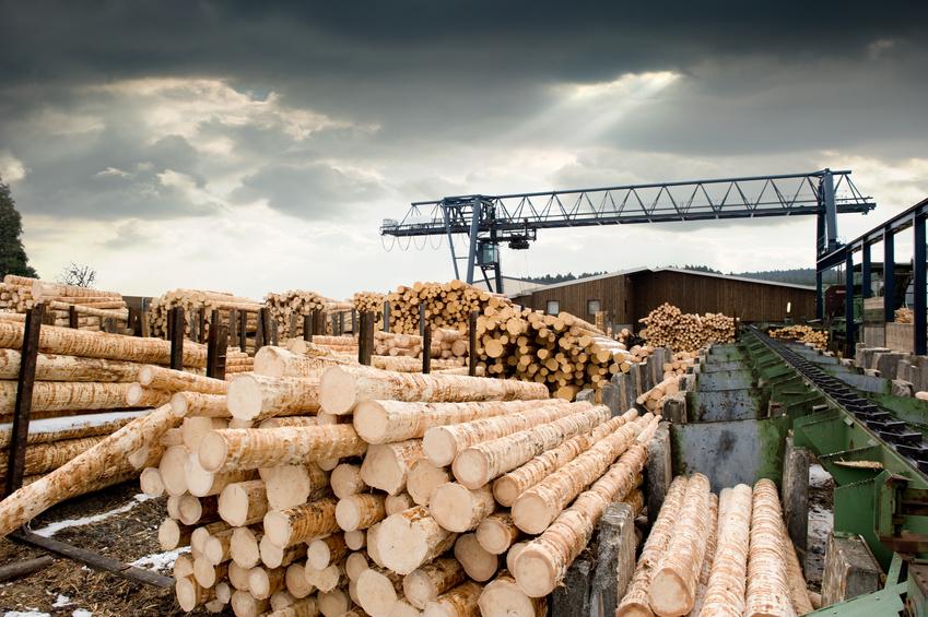 Работа на лесопилке Польша мужчины - Работа в Польше
