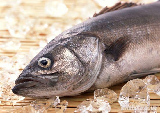 На работу в Дании требуется рабочие в рыбпромышленность - Работа в Дании