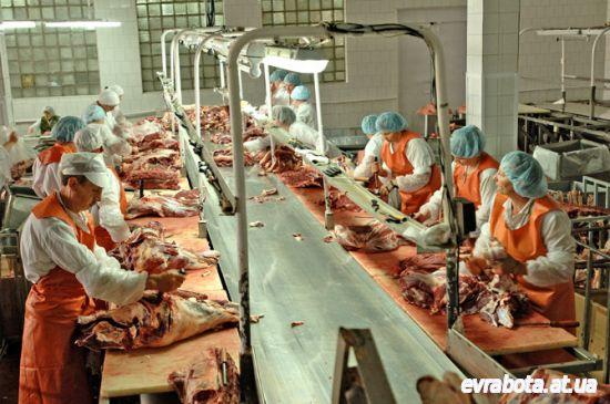 Работа и вакансии мясокомбинат в Польше - требуется мясник - Работа в Польше